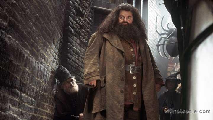 фото №4 из Гарри Поттер и Тайная комната