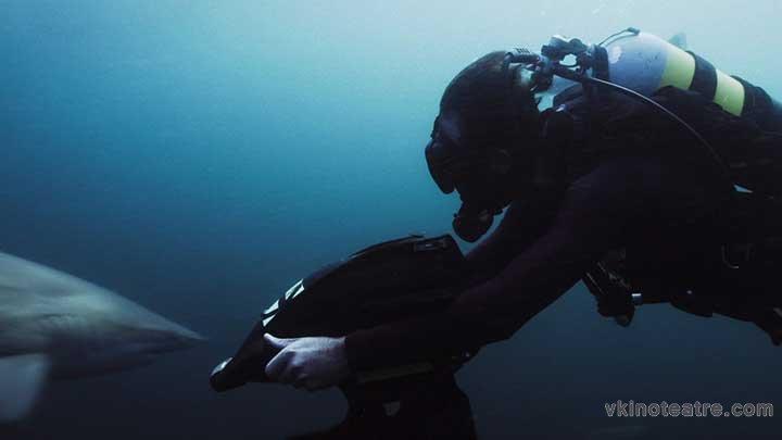 фото №4 из Глубокое синее море 3